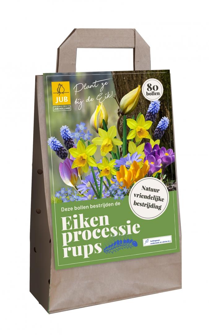 Met bloembollen de eikenprocessie rups te lijf