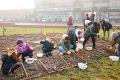 Scholieren helpen tulpenvelden aanleggen in Poptahof en Voorhof