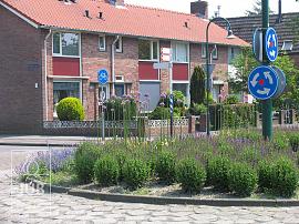 Steenbergen