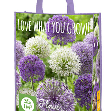 X 1 SHOPPING BAG 20 ALLIUM PAARS/WIT 'LOVE WHAT YOU GROW!'  12/14