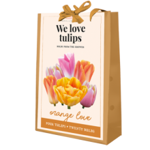 X 1 TAS 20 TULIPA 'WE LOVE TULIPS' ORANGE LOVE 11/12