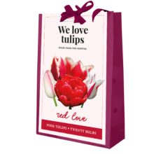 X 1 TAS 20 TULIPA 'WE LOVE TULIPS'  RED LOVE 11/12