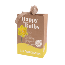 X 1 TAS HAPPY FLOWER BULBS 20 NARCISSUS STANDARD VALUE (PP) 12/14