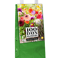 X 5 DAHLIA DECORATIEF TYPE MIX I