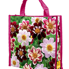 X 1 SHOPPING BAG 5 DAHLIA FAVOURITE BALLET I